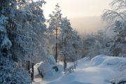 Kesk-Soome talv